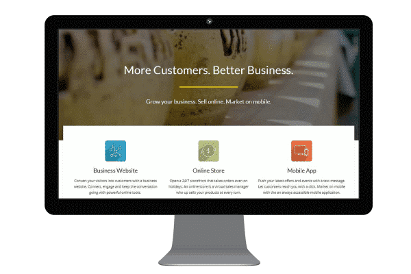 Business Website by WP Design Philippines